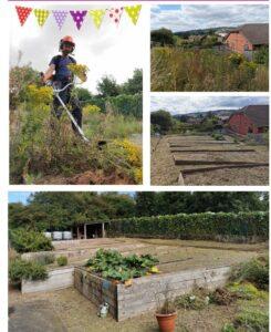 community-garden-strim