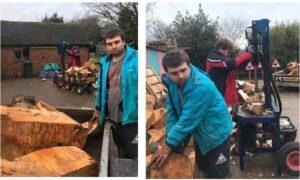 Firewood Fun